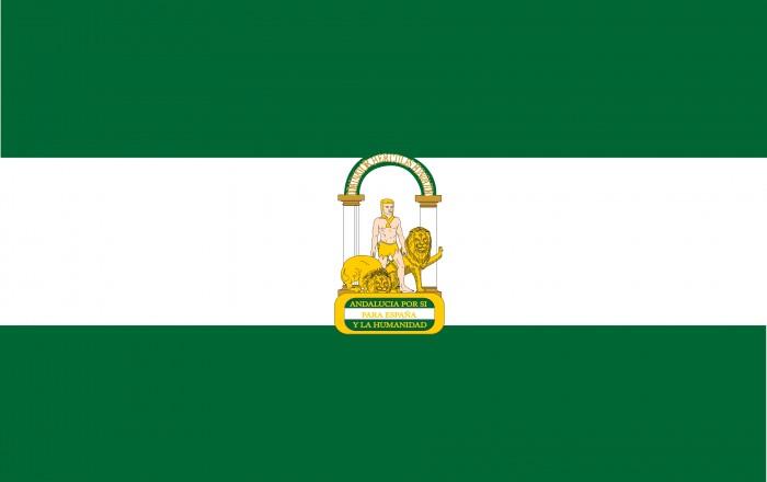 Alegaciones al Proyecto de Decreto por el que se regula el procedimiento de actuación ante situaciones de riesgo y desamparo de la Infancia y Adolescencia en Andalucía (SIMIA)