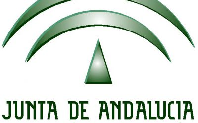 PETALES España visita la Dirección General de Participación y Equidad de la Consejería de Educación de la Junta de Andalucía