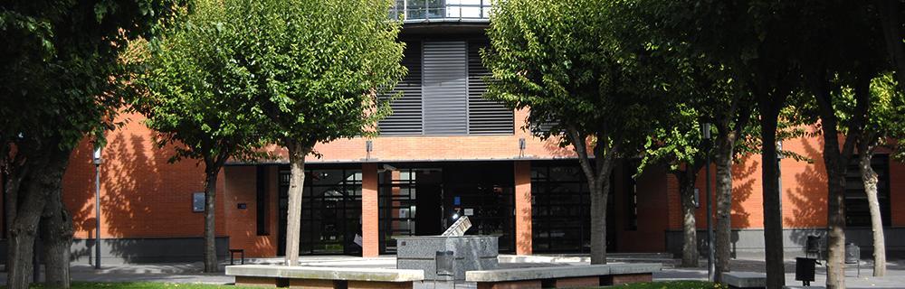 PETALES España y el Instituto de Derechos Humanos Bartolomé de las Casas Universidad Carlos III